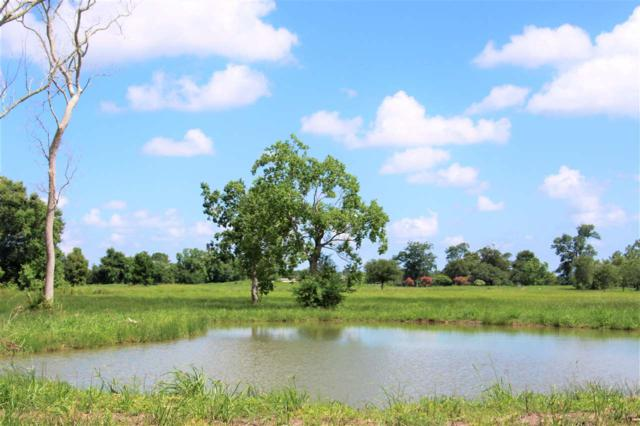 8383 Labelle Rd., Beaumont, TX 77705 (MLS #196868) :: TEAM Dayna Simmons