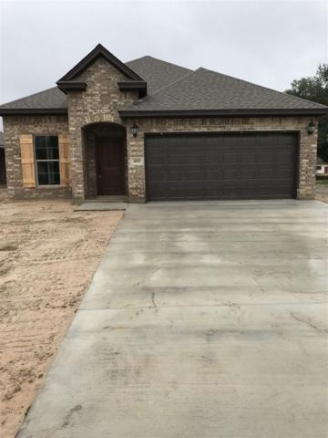 495 Cora Lee, Sour Lake, TX 77659 (MLS #199477) :: TEAM Dayna Simmons