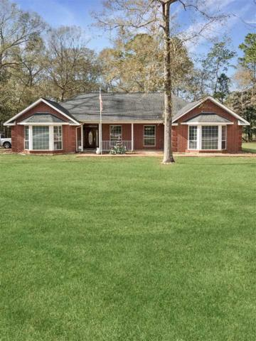 3058 Clearlake Rd, Kountze, TX 77625 (MLS #201022) :: TEAM Dayna Simmons