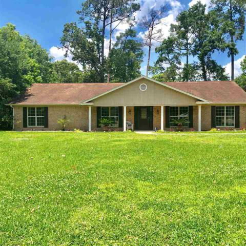 442 Piney Point, Sour Lake, TX 77659 (MLS #204463) :: TEAM Dayna Simmons