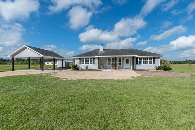 15874 Gw Jones Sr Rd, Sour Lake, TX 77659 (MLS #207484) :: TEAM Dayna Simmons