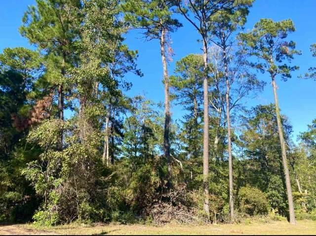 0000 Driftwood Loop, Hemphill, TX 75948 (MLS #213886) :: Triangle Real Estate