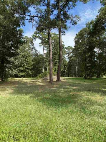 tbd Creekside Loop, Sour Lake, TX 77659 (MLS #214283) :: TEAM Dayna Simmons