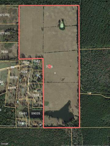 459 County Road 4437, Spurger, TX 77660 (MLS #217452) :: Triangle Real Estate