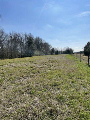 000 Higway 105, Beaumont, TX 77708 (MLS #217554) :: Triangle Real Estate
