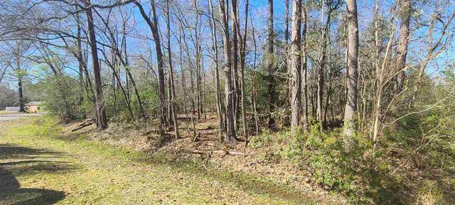 Lot 38 Blk 14 Pinemont Dr, Sour Lake, TX 77659 (MLS #217897) :: TEAM Dayna Simmons