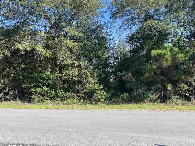 Gore Store Rd., Village Mills, TX 77663 (MLS #223582) :: Triangle Real Estate