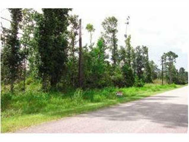 0000 Doty Rd. Behind Cemetary, Vidor, TX 77662 (MLS #149124) :: TEAM Dayna Simmons