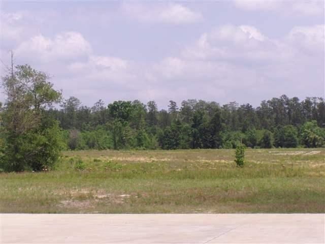 00 Park Road, Lumberton, TX 77657 (MLS #195275) :: TEAM Dayna Simmons