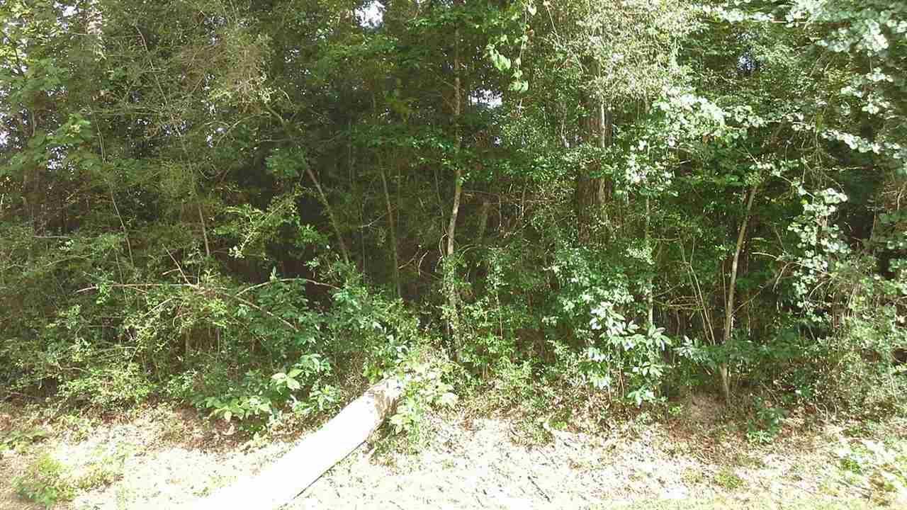 TBD Idylwood And Wildwood Drive - Photo 1