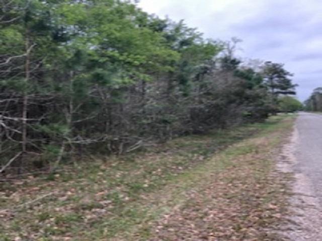1.37 Acres Valda, Orange, TX 77632 (MLS #202491) :: TEAM Dayna Simmons