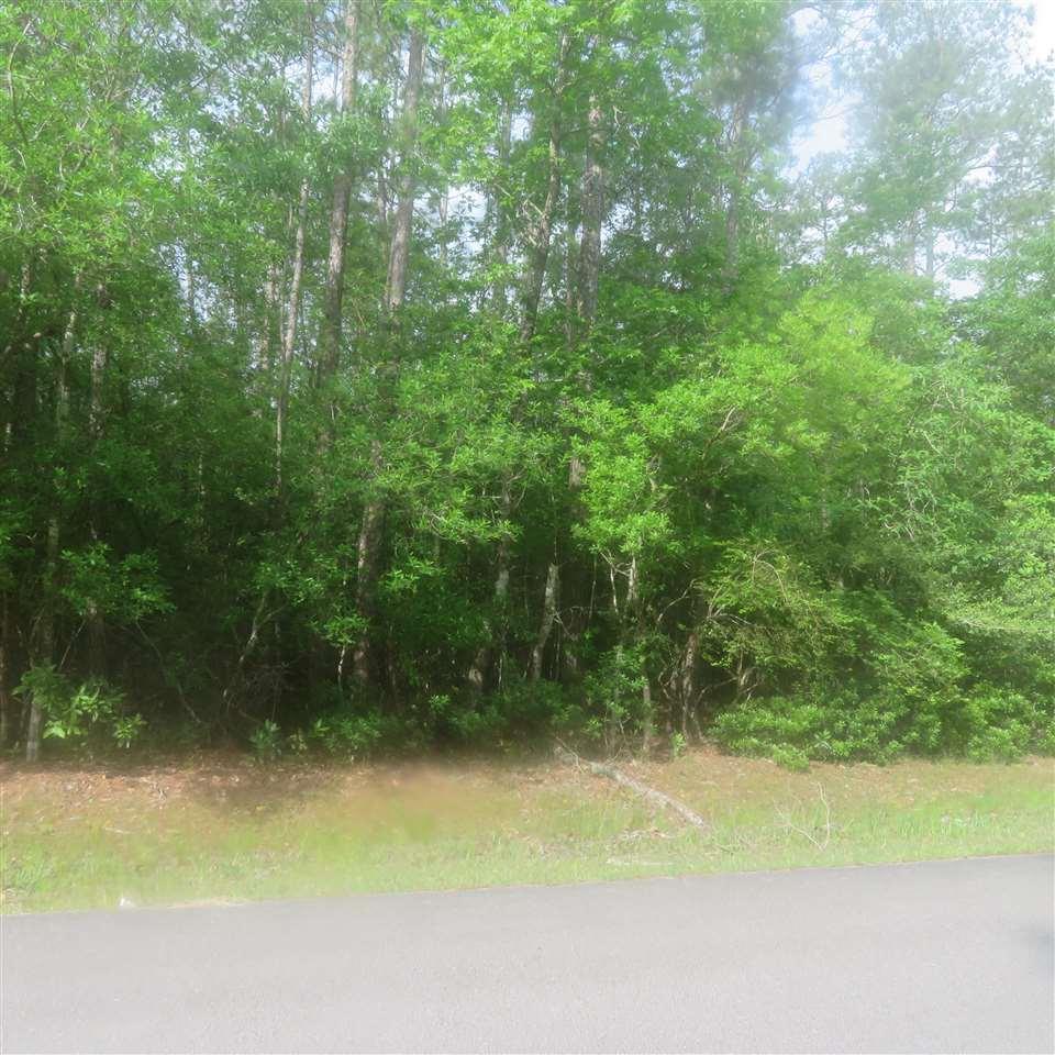 LOTS 8, 9 Wildwood Drive - Photo 1