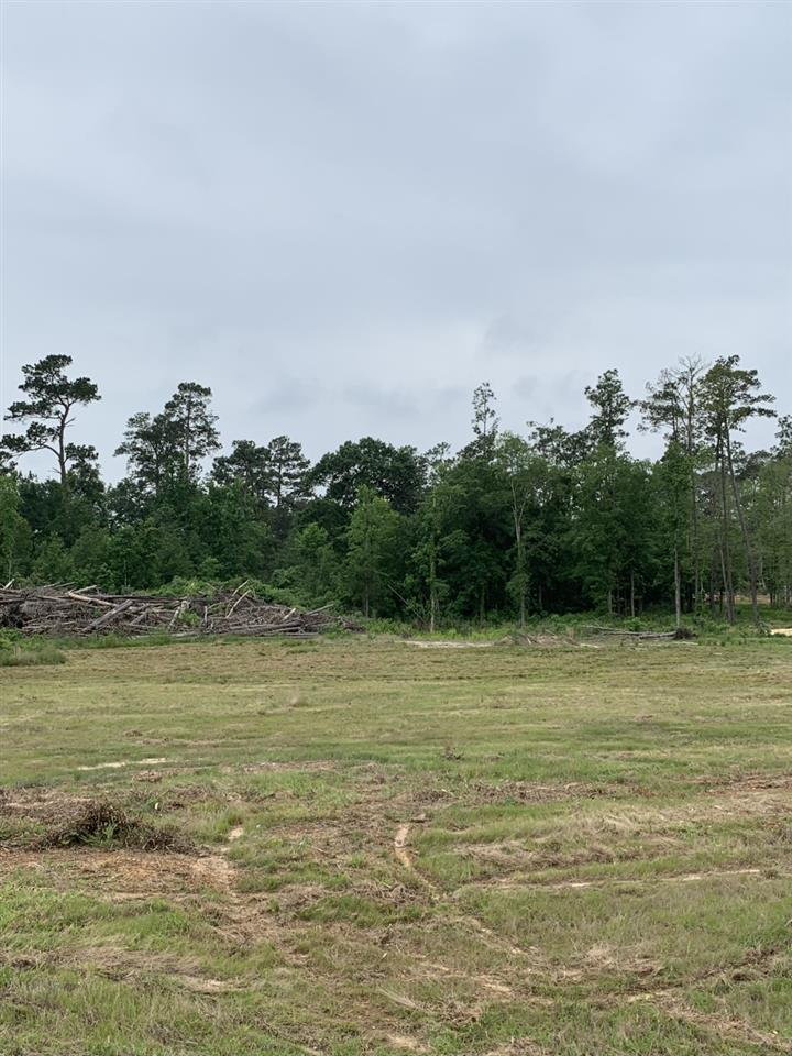 00 Hwy 327 Frontage - Photo 1