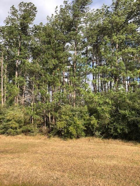 1339 S Hwy 326, Sour Lake, TX 77659 (MLS #205794) :: TEAM Dayna Simmons