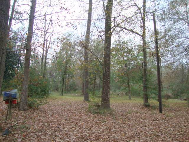 1060 County Road 721, Buna, TX 77612 (MLS #209543) :: TEAM Dayna Simmons