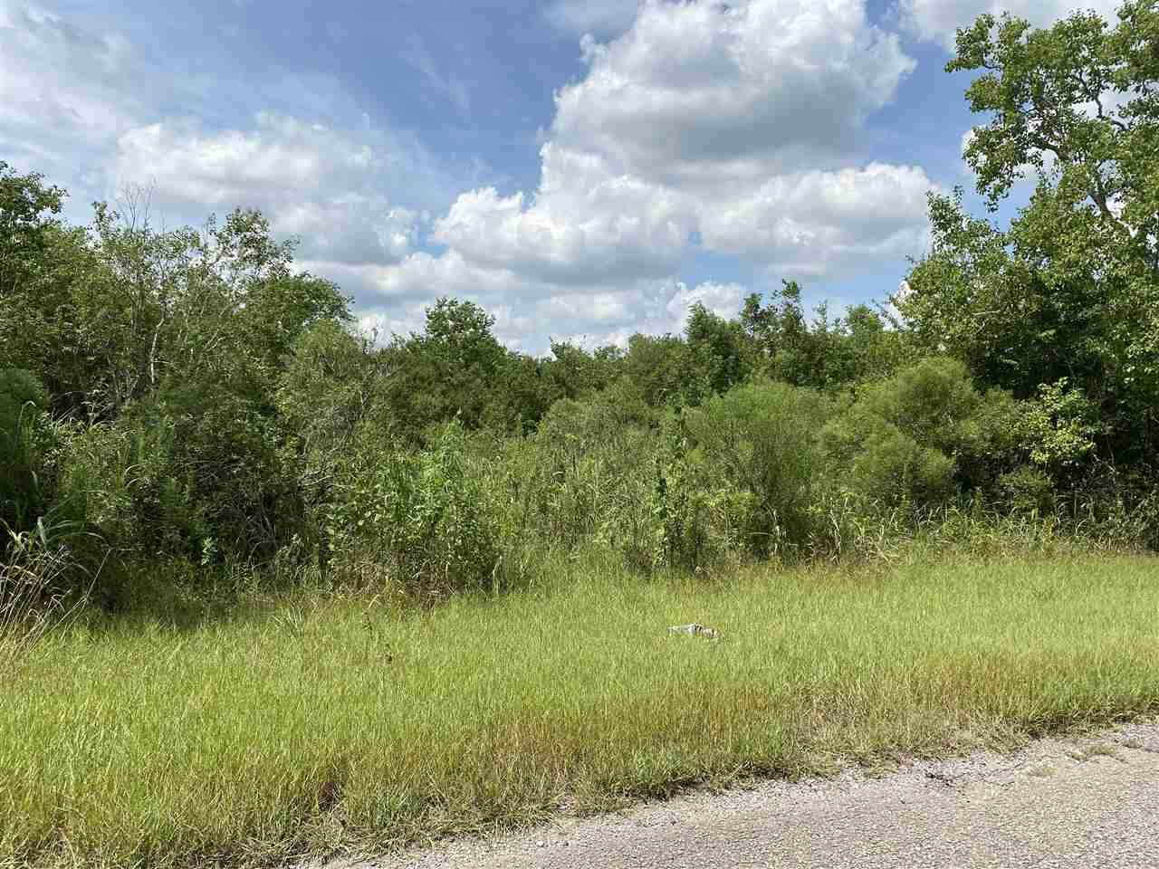 59.52 ac Smith Rd - Photo 1