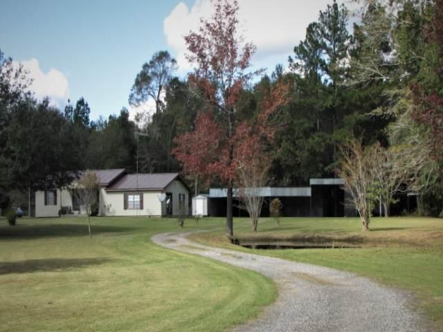 9955 Cravens Camp Road, Silsbee, TX 77656 (MLS #216097) :: TEAM Dayna Simmons