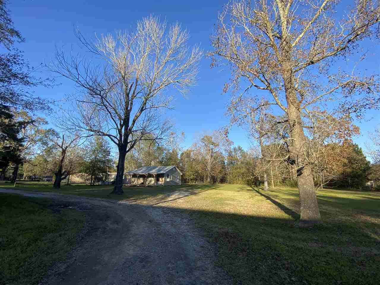 12284 Hwy 62 Old - Photo 1