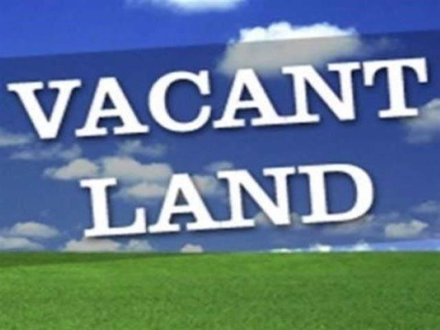 1553 Nederland Ave, Nederland, TX 77627 (MLS #218530) :: Triangle Real Estate
