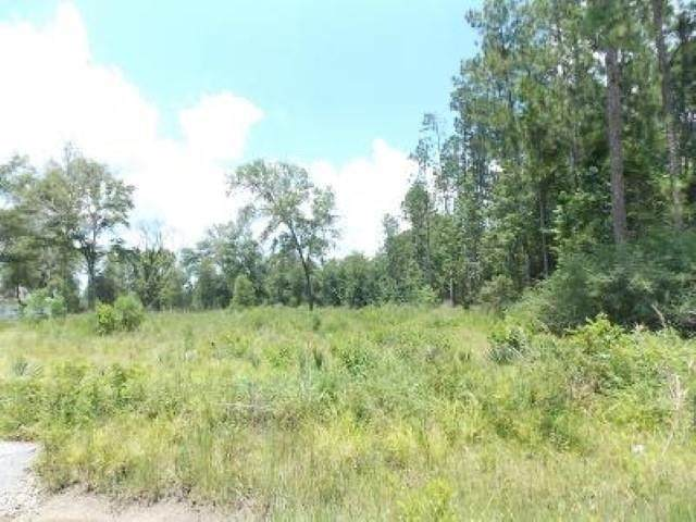 2205 Old Beaumont Rd, Sour Lake, TX 77659 (MLS #220769) :: Triangle Real Estate