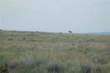 160 Acres Musselshell Trail ; Roy - Photo 1