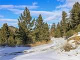 2 Bruner Mountain Road - Photo 3