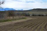 170 Acres Highway 310 - Photo 10