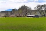 170 Acres Highway 310 - Photo 14