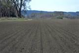 170 Acres Highway 310 - Photo 2