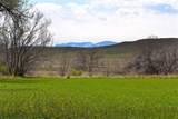 170 Acres Highway 310 - Photo 20
