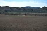170 Acres Highway 310 - Photo 4