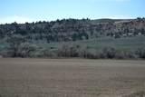 170 Acres Highway 310 - Photo 5