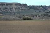 170 Acres Highway 310 - Photo 6