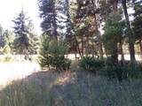 211 Danaher Trail - Photo 6