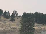 40 Acres Reno Lane - Photo 2