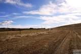 24 Acres Nye Road - Photo 29