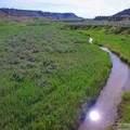 1326 Acres *Off Canyon Creek Road - Photo 11