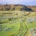 1326 Acres *Off Canyon Creek Road - Photo 6