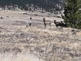 TBD Wild Horse Meadows, Anaconda - Photo 10