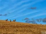 TBD Wild Horse Meadows, Anaconda - Photo 11