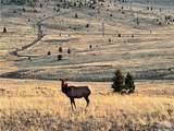TBD Wild Horse Meadows, Anaconda - Photo 12