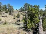 3135 Rocky Ridge Rd - Photo 12