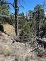3135 Rocky Ridge Rd - Photo 22
