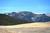 1160 Acres Little Careless Creek Road - Photo 33