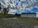 2,147 Acres Rapelje Road - Photo 10