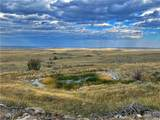 2,147 Acres Rapelje Road - Photo 14