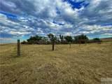 2,147 Acres Rapelje Road - Photo 19