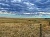 2,147 Acres Rapelje Road - Photo 20