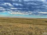 2,147 Acres Rapelje Road - Photo 21