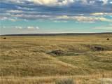 2,147 Acres Rapelje Road - Photo 22